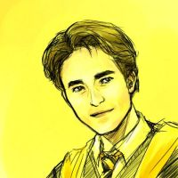 HP - Hufflepuff Hero by bluestraggler