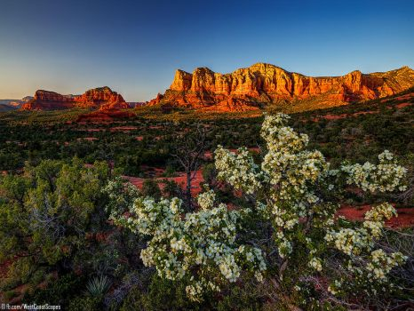 Sedona by IvanAndreevich