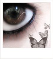 ::Butterfly Eye:: by Bntuae