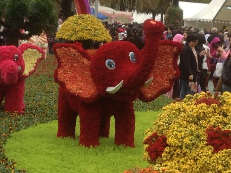 Hong Kong Flower Exhibition - eleph by angiewaiwai