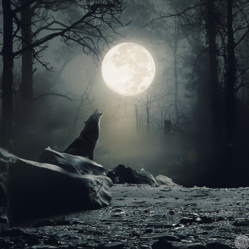 Wolf's howling by SynystraOff