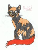 Redtail by SassyHeart