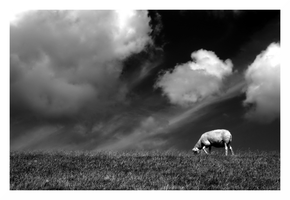 When clouds descend to graze by Myrddhin