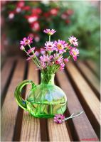 Pink Daisy II by theresahelmer