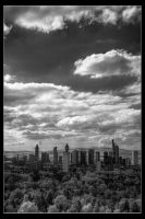 Above the Trees by p0rphyrogene