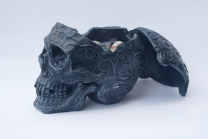 DSC06766 Treasure Skull 2 by wintersmagicstock