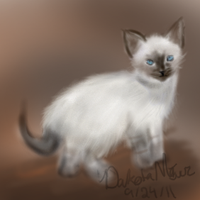 Lil Kitty by NeonDefined
