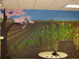 field of corn through the year by nutson