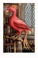 Fawkes by WildWoodArtsCo