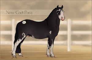 HIP #2 - New Coet Pony Adoptable by Yumpy