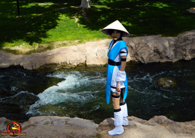RAIDEN :: BIDING TIME by Riku-Ryou