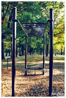 Monkey Bars by jannyjanjan
