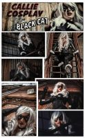 Black Cat Series Collage by CallieCosplay