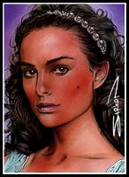 Padme Sketch Card 7 by RandySiplon