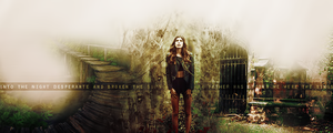 Desperate And Broken Sig by Seelie08