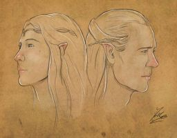 Galadriel and Celeborn by Moumou38