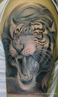 Tiger Tattoo on Arm by Remistattoo
