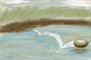 Stone on water (sketch) by puma290798