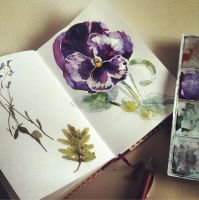 Nature sketch by Shaany