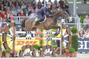 3DE Show Jumping Phase Stock 121 Wooden Fence by LuDa-Stock