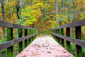 Bridge to Autumn Glory by GlassHouse-1