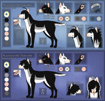 Satomi reference sheet JULY by Roneri