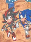 Sonic and Shadow by supersonicthehedghog