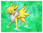 Jolteon SAI practice by Drunk-Kittens