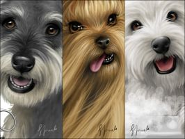 DOGS - Commission - CLOSE-UPS by ceres86