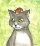 Tom and Jerry by emmitz