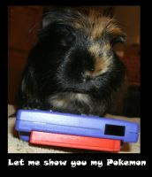 Let me Show You my Pokemon by MadForHatters
