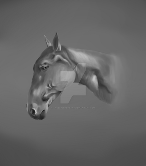 horse study by AngelInTheHeart