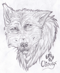 Vintage Wolf Sketch by Some-Art