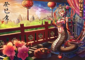 Chinese Year 2013 by Takos000