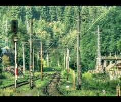 Sinaia railway... by Iulian-dA-gallery