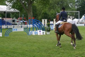 Show Jumping Stock 038 by LuDa-Stock