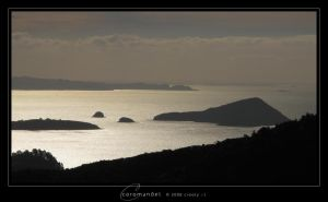 Coromandel by Crooty