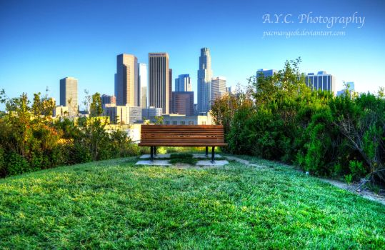 City of Angels Lookout by pacmangeek