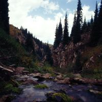 Water, rocks and spruces by voldemometr