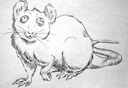 Another cuter rat by Ratshed