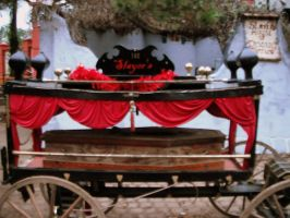 Coffin Carriage by kAoTiCwOnDeR