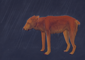 Generic depressed dog by earthytones