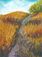 Golden Path Pastel Painting by Angela-Vandenbogaard