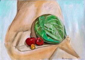 cabbage and tomatoes by feafox92