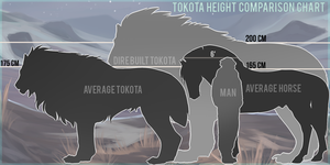 Tokota Guide: Height comparison chart by noebelle