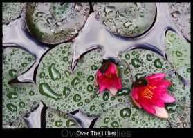 Over The Lillies by madragonn