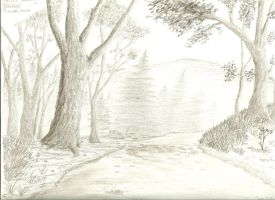 Forest in graphite by Lootra