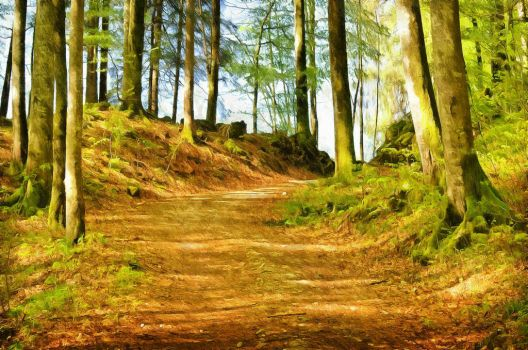 Old Dirt Path by oldhippieart