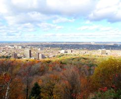 Autumn Day in Montreal by Kitteh-Pawz