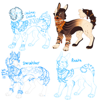 Dog Adopts + Customs by Plumbeck